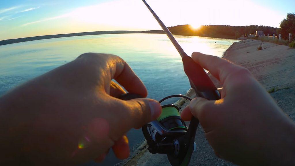 Самодур - отличная снасть для ловли карпа